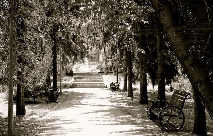 b&w park